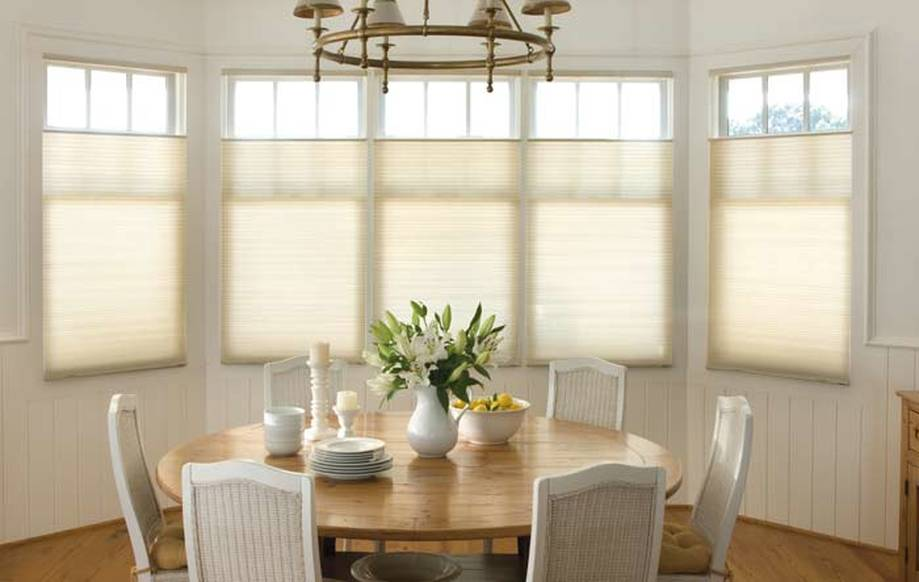 Cellular honeycomb pleated shades palmetto window for Motorized top down bottom up shades